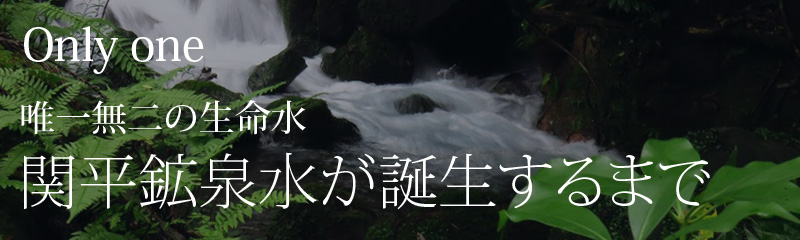 関平鉱泉水が誕生するまで